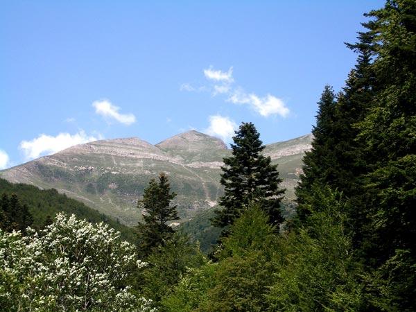 Ochagavia / Otsagabia_Pico de Orhi